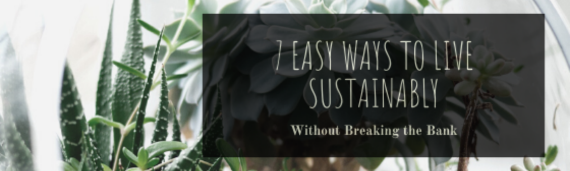 Blog banner with succulents in the background, text saying 7 easy ways to live sustainably without breaking the bank