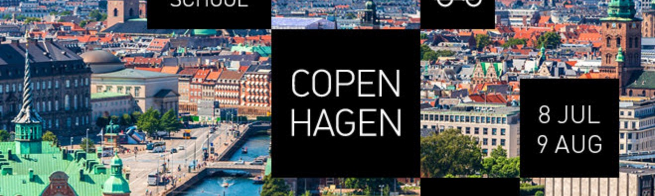 Photo banner for CIID Summer School in Copenhagen in partnership with UN's sustainable development goals — 8 July to 9 August