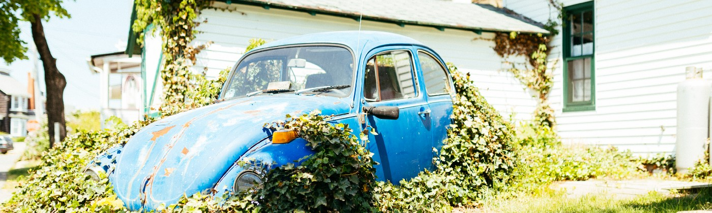 A blue Volkwagen sitting with plants growing out of it