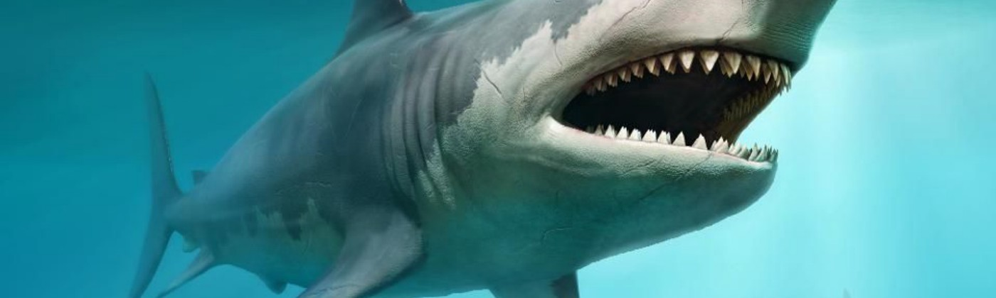 For sharks, restricted motion induces asphyxiation.