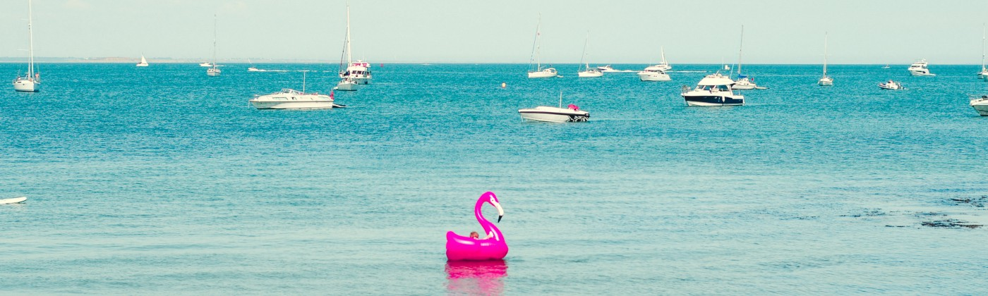 Photo of a pink flamingo inflatable floating on the water.