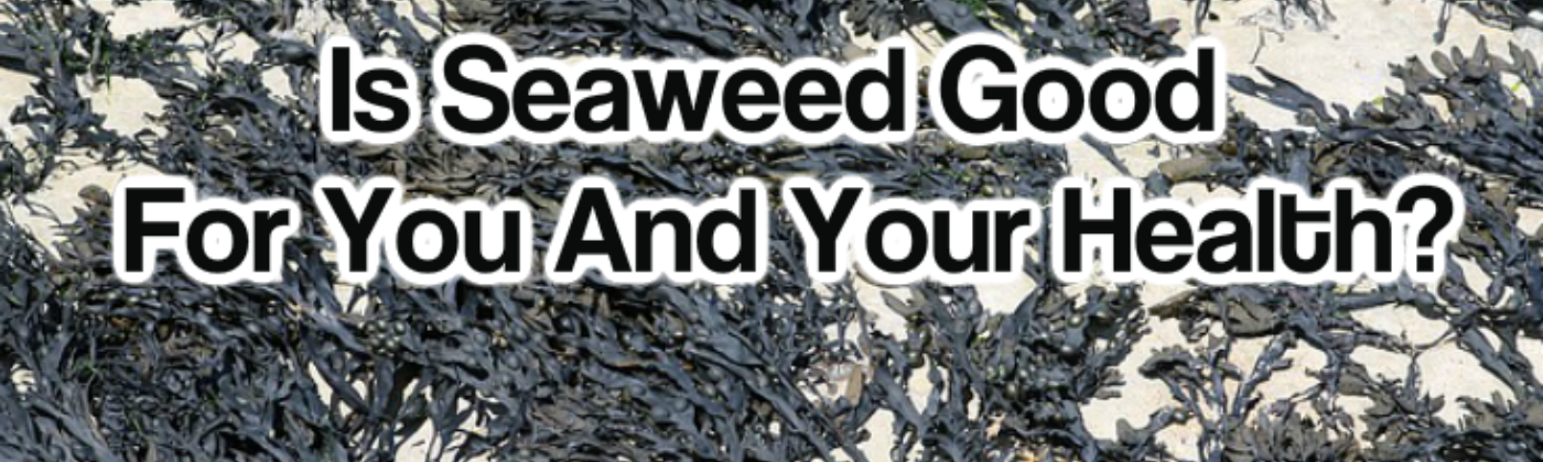 is seaweed good for you