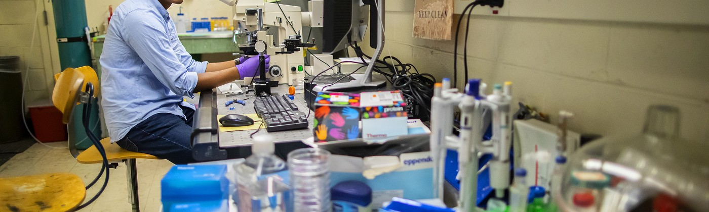 Sriram sits in front of a microscope on lab bench piled high with supplies.