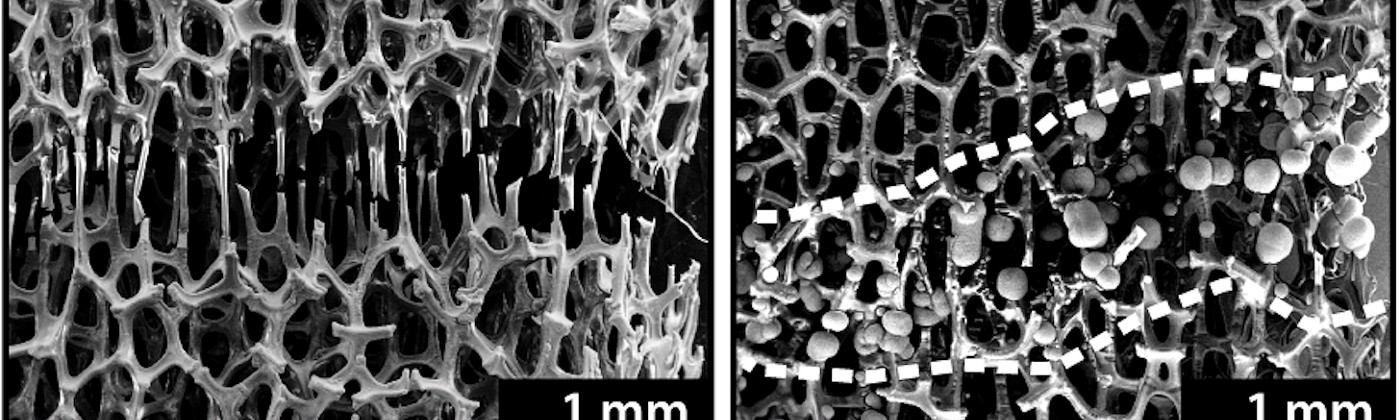 Before-and-after micrographs show broken struts of nickel foam, then globs of nickel holding those broken struts together.