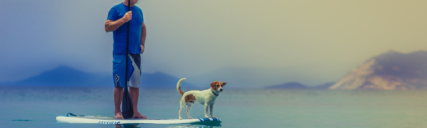 Image of dog and owner on a surf board