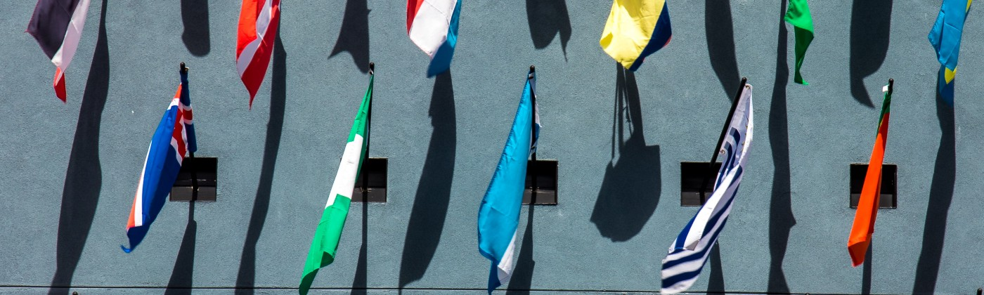 Flags from different countries Photo by Jason Leung on Unsplash