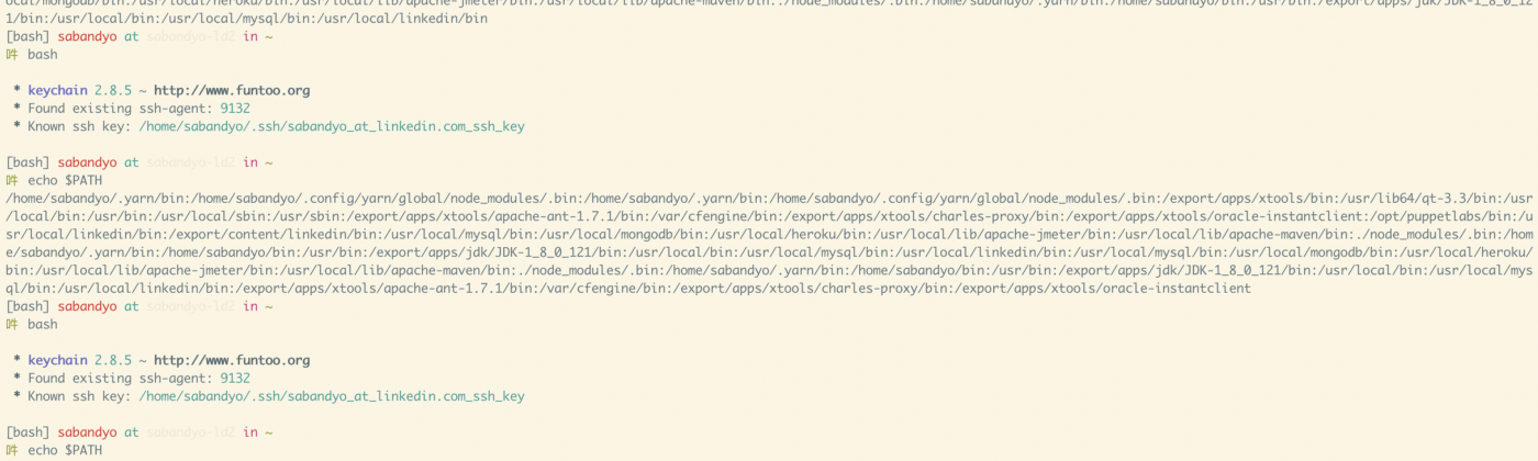Screenshot of my terminal window displaying repeated entries are getting added to PATH on every new shell session