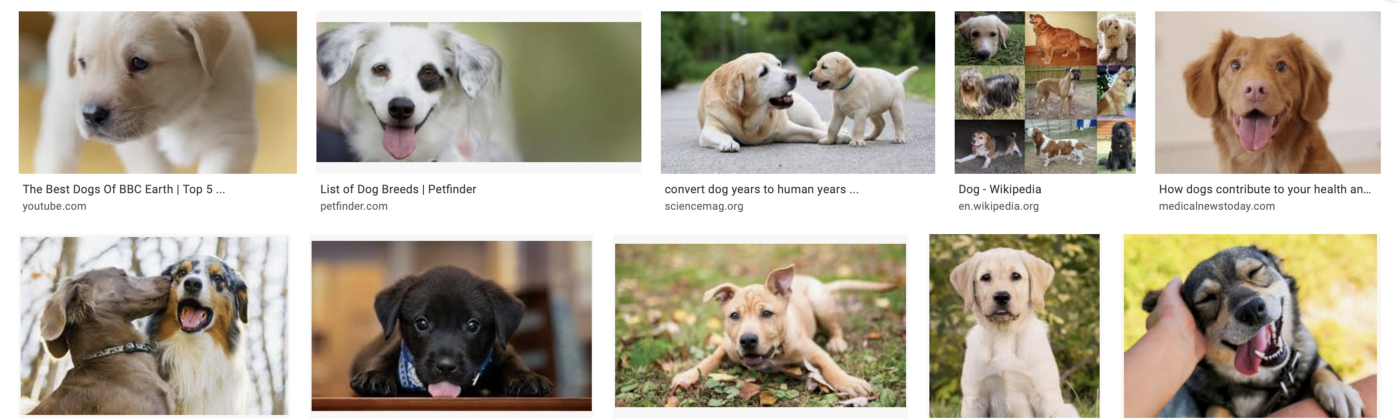 Example of image search in Google Images