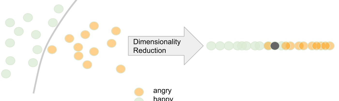Simplified dimensionality reduction example (from 2D to 1D)