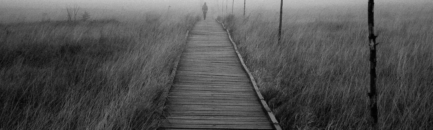In a black and white photo, a shadowy figure walks into fog at the end of a wooden walkway in the midst of an overgrown field of grass.