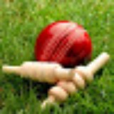 Cricket Info Today