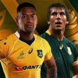 En Vivo# Wallabies vs Springboks Live Rugby TV