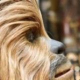 Loweded Wookie