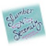 Slumber N' Serenity Mattress and Furniture
