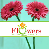 Flowers And You