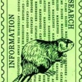 Beaver Stamps