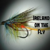 Editor Ireland on the Fly