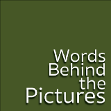 Words Behind the Pictures