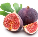Figs in Winter