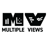 Multiple Views: Visualization Research Explained