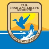Updates from the U.S. Fish and Wildlife Service