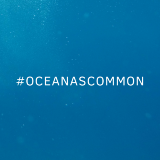 Ocean as common
