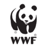 Panda blog @WWF-Hong Kong