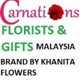 Carnations - Florists and Gifts