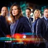 Law & Order: Special Victims Unit 22 — 2 (Online)