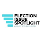 Election Issues Spotlight
