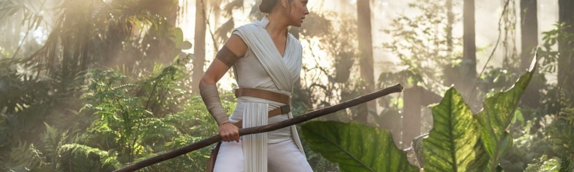 Star Wars The Rise Of Skywalker Is Bad Reddit Fanfiction And A Middle Finger To A 42 Year Old Legacy By Maxance Vincent Medium