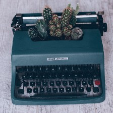 A typewriter with cacti growing out of it.