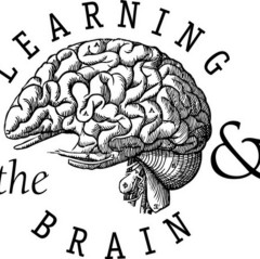 Learning & the Brain