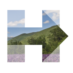 Hillary for NH