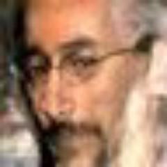 Marcelo Stein