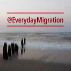 EveryDayMigration
