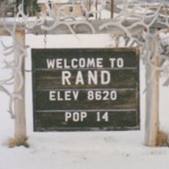 Rand Wise