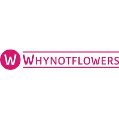 Why Not Flowers