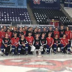 NAHL Vipers
