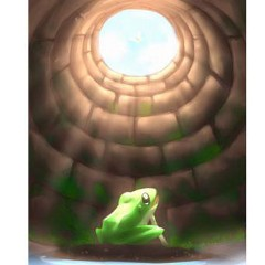 Frog_In_The_Well