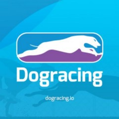 Dogracing