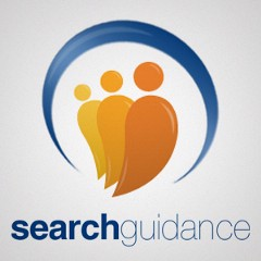 Search Guidance