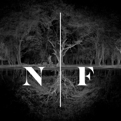 New Forest Film Co