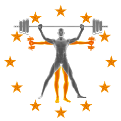 Functional Fitness Courses
