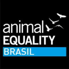 Animal Equality Brasil