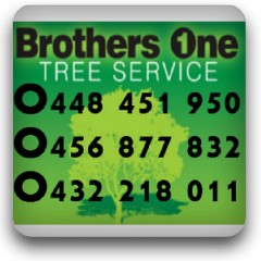 Brothers One Tree Service