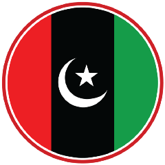 Image result for PPP party flag png