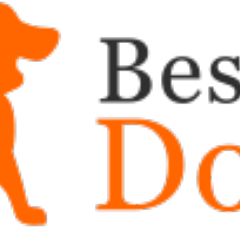 Best Of Dogs