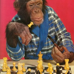 Chimps Dressed Like People's Party of America