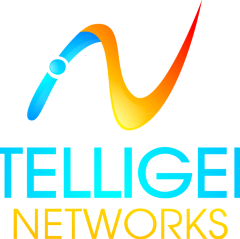 Intelligent Networks Co.
